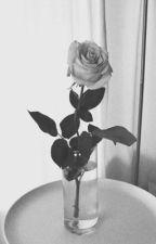 hello • zaylena by itselenamarie