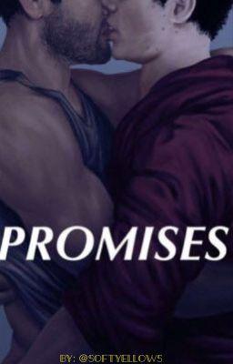 promises || sterek (one shot)