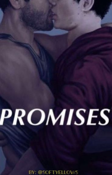 promises || sterek (one shot)