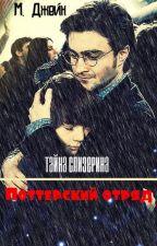 Поттерский отряд. Тайна Слизерина by Meriannochka2016