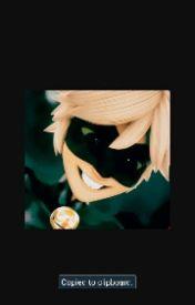 ~Heros~Chat Noir (Adrian) x Reader by LostGirl-NeverLand