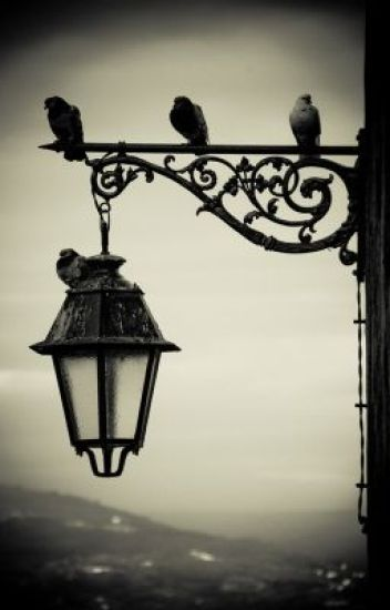 The Street Lamp