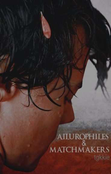 Ailurophiles & Matchmakers [Zarry AU]