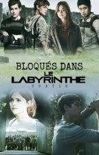 Bloqués Dans Le Labyrinthe by Coatie_