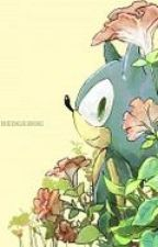 Sonic the Hedgehog x Reader: My Brave Hero by Victini33
