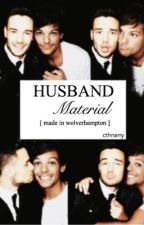 Husband Material • lilo au by cthnarry