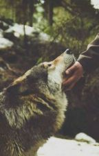 Mon loup by juju_pink