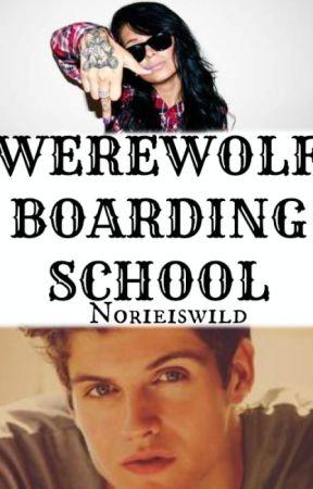 Werewolf Boarding School by seaweediswild