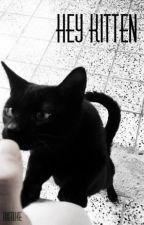 Hey Kitten by hixmuke
