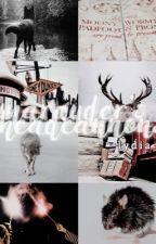 Marauder Headcannons⚡ hp by londonish