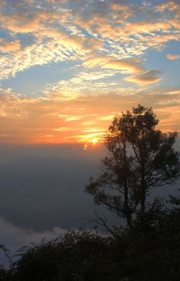 20 Poems by avijit3001