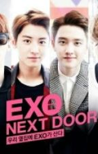 EXO NEXT DOOR by ellaessilef24