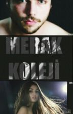 MERAK KOLEJİ (#AlSel Fanfiction) by irmkrby