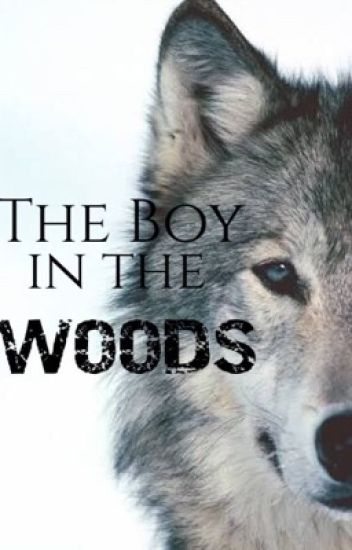 The Boy in The Woods #wattys2016