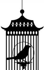 The Caged Bird by YatogamiSakuya