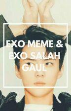 EXO MEME & EXO SALAH GAUL by hana31543
