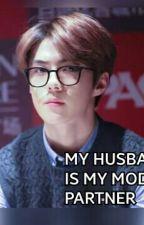 My Husband Is My Model Partner!?[HUNFANY FT. ExoShidae] by itscrunchhy