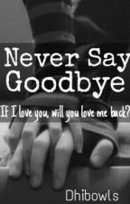 Never Say Goodbye by dhibowls