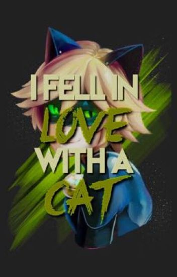 I fell in love with a Cat (Chat Noir X Reader)
