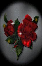 The Red Roses by alyssankayden