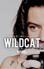 wildcat » harry styles au [mature] by headhunters