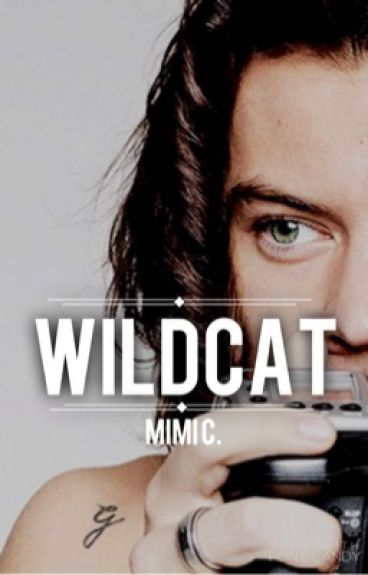 wildcat » harry styles au [mature]