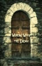 Working With the Enemy (A Harry Potter Fan Fiction) by NerdGirl237