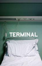 terminal // t.j by SJDunWrites