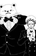 """""""Du bist meine Katze , kapiert ?"""" Trafalgar Law x Rea by Sankarea003"""