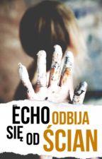 Echo, odbija się od ścian [NIBY POPRAWKI] by ArtemidaZohxq