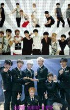 Frases de Super Junior y BTS  by LittleTurtle2003