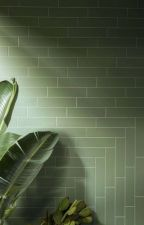 Will Solace X Reader by vanvaneeks1983