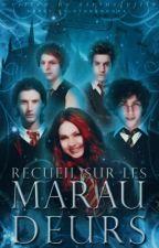 Recueil sur les Maraudeurs by lady_maraudeuse