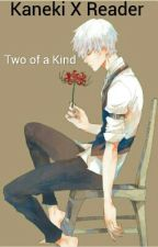 Two Of A Kind (kaneki X Reader) by ninetails1113