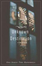 Unknown Destination by rimz123