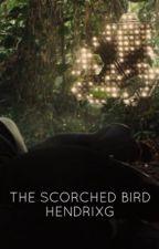 The Scorched Bird by spideyhollan6