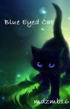 Blue Eyed Cat by mdzmb16