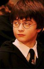 Harry Potter Prefences by WeasleynotPotter