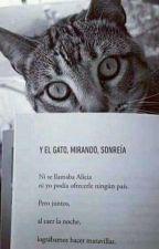 Me Lo Dijo Un Gato by TreyciiAlisson