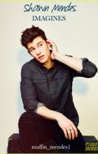 Shawn Mendes Imagines by muffin_mendes1