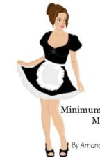 Minimum wage maid by amanda_b123