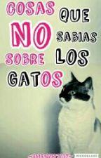 Cosas Que No Sabias Sobre los Gatos by -Wizzuz-