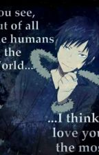 You Are My Favourite Human! Orihara Izaya X Reader by MyatMaDe