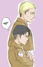Levi x Erwin by Anispace