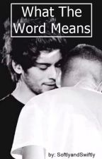 What The Word Means (Ziam) - Traducción by ForgiveQuickly