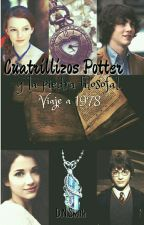 Cuatrillizos Potter y la piedra filosofal. [Viaje a 1978] by DyraHolmes