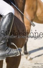 Silverstone Horse Riding Academy by JfMaddie