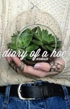 diary of a hoe by anobain