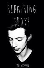 Repairing Troye | troyler (DISCONTINUED) by -poppyseed