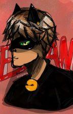 Te Amo a Chat Noir fanfiction by MissGissy